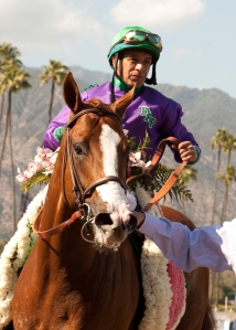 California_Chrome_cb4_200 (1)